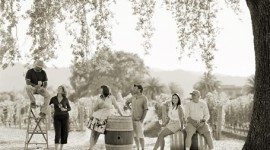 Image Copyright Kristen Ashe Vineyards